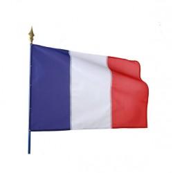 Visuel du drapeau tricolore sur hampe - Leader Equipements