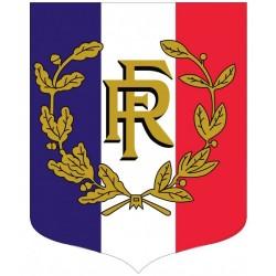 Visuel de l'Écusson porte-drapeaux Tricolore RF et Palmes éco - Leader Equipements