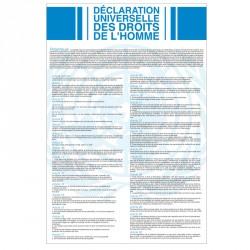 Plaque Déclaration Universelle des Droits de l'Homme et du Citoyen - Version classique